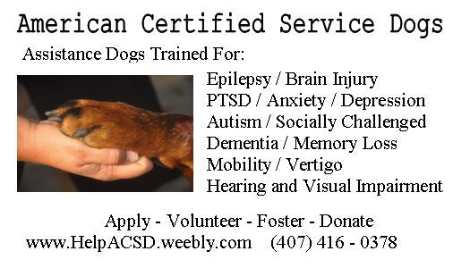 florida service dog training | orlando insurance store
